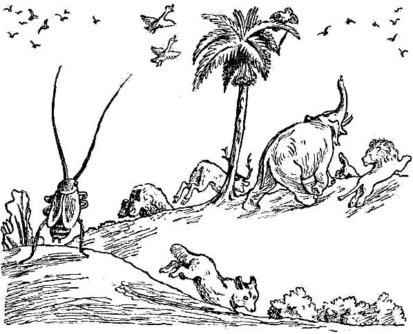 Раскраска тараканище