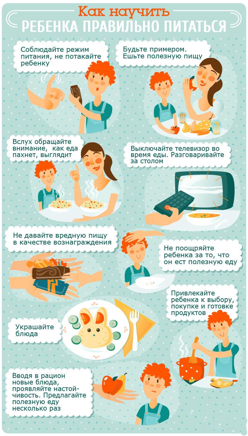 здоровое питание ребенку 8 лет